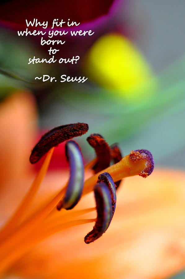 Stand Out by Christine Ricker Brandt