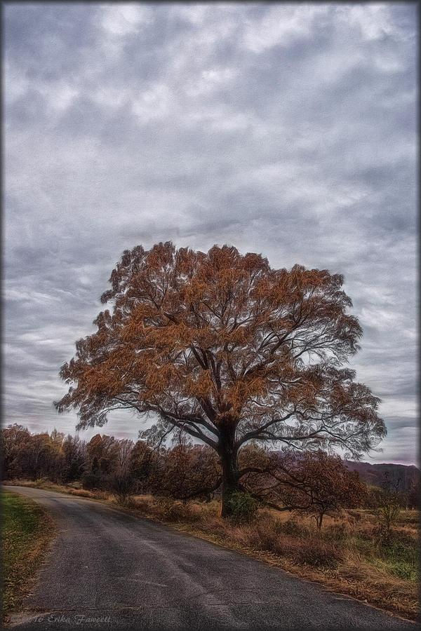 Fall Photograph - Standing Alone by Erika Fawcett