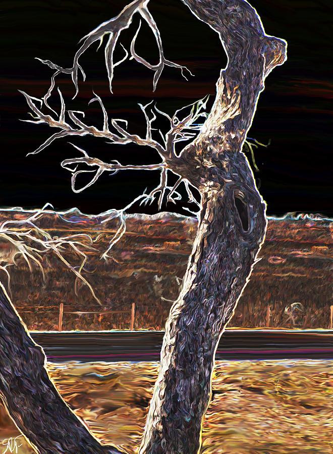 Tree Photograph - Standing Alone by Savannah Fonner