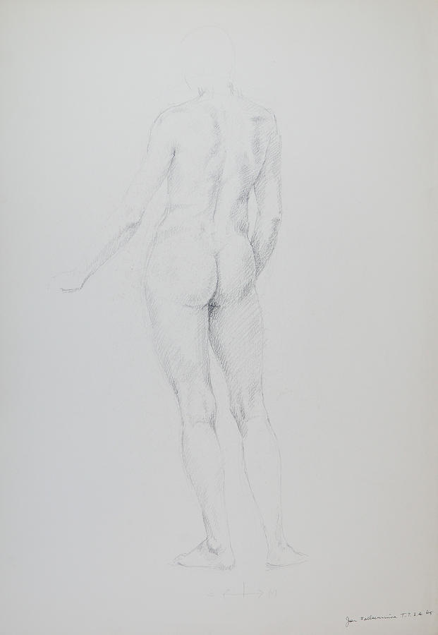 Standing Figure, Rear View, Student Work. Drawing