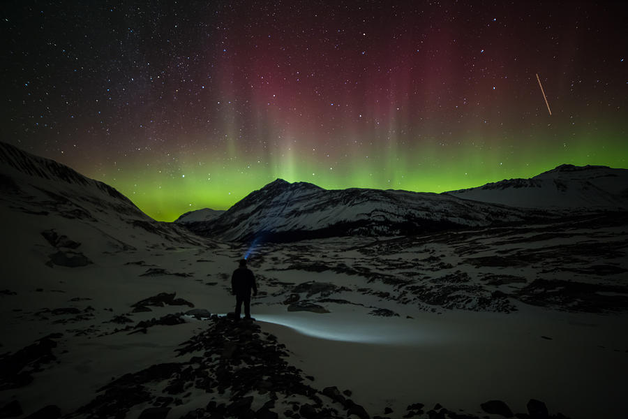 Alberta Photograph - Standing In Awe Of The Auroras by Craig Brown