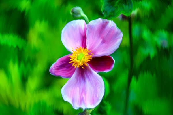 Flower Painting - Standing Still by Savannah Fonner