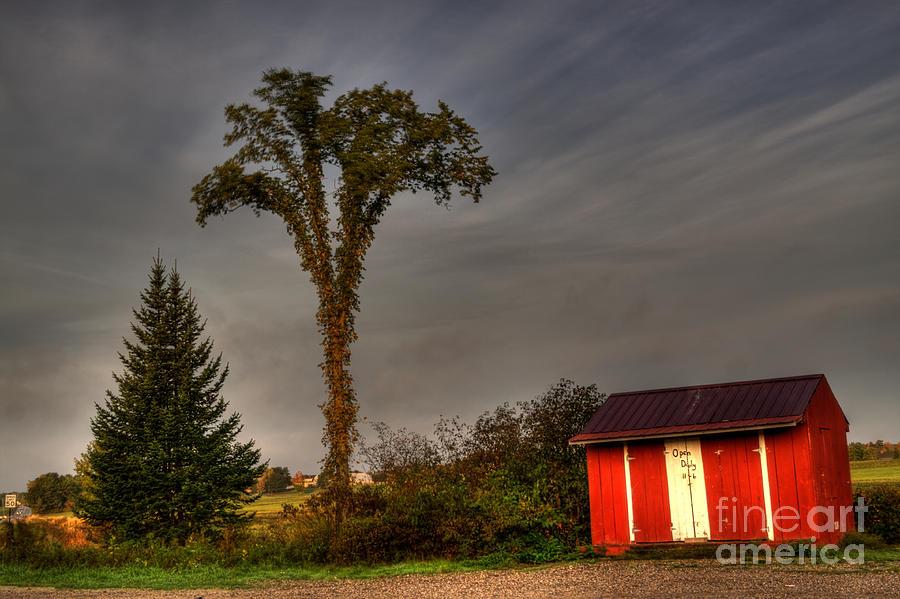 Dayton Photograph - Standing Tall by David Bishop