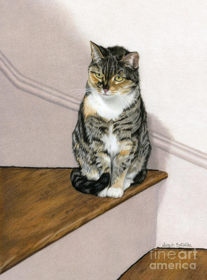Cat Painting - Stanzie Cat by Sarah Batalka