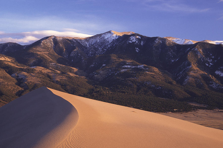 Colorado Photograph - Star Dune by Eric Foltz