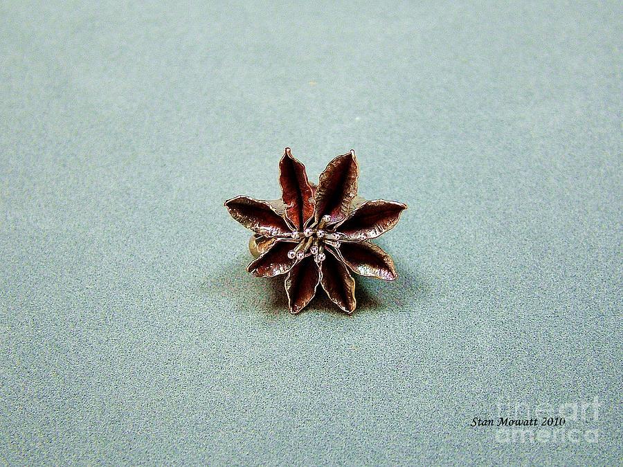 Pendant Photograph - Star Flower by Stan Mowatt