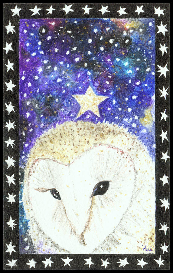 Star of the Night by Lise Winne