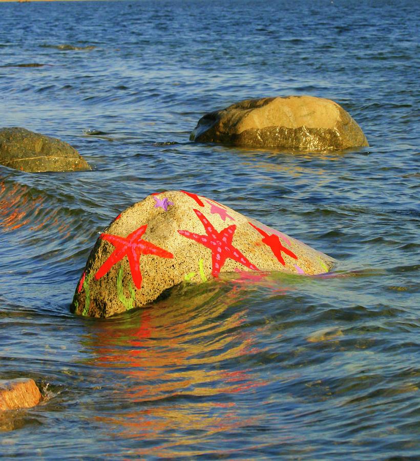 Starfish Rock by Melodie Douglas