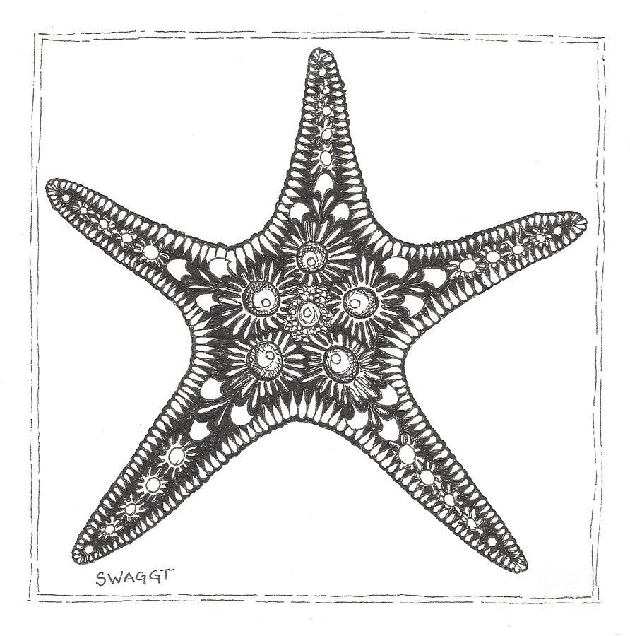 Uncategorized Starfish Drawings starfish drawing by stephanie troxell troxell