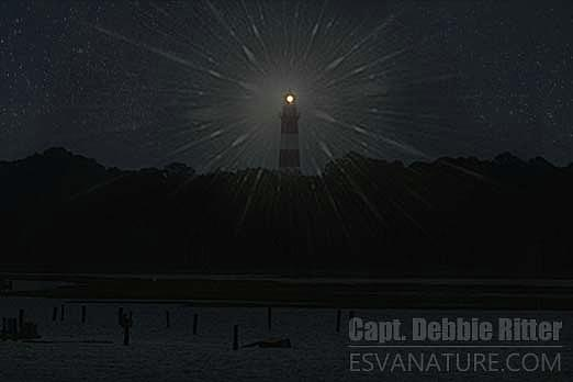 Lighthouse Photograph - Starry Lighthouse 2 by Captain Debbie Ritter