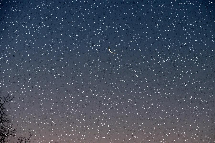 Starry Morning Sky Photograph by Luciana Seymour