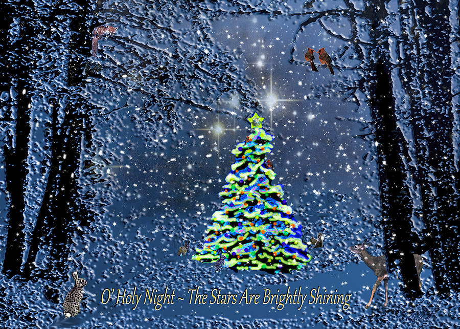 Starry Night Forest Christmas Card Photograph by Michele Avanti
