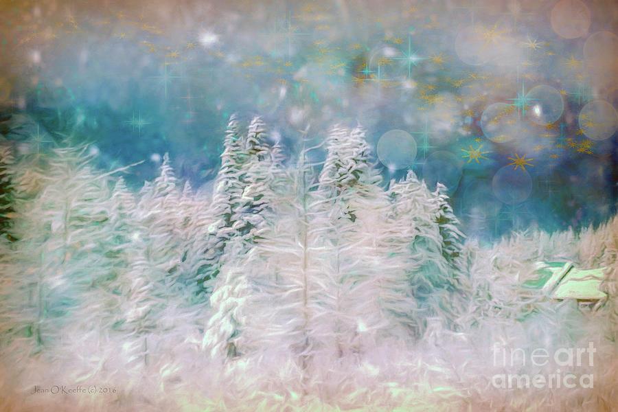 Snow Photograph - Starry Night by Jean OKeeffe Macro Abundance Art