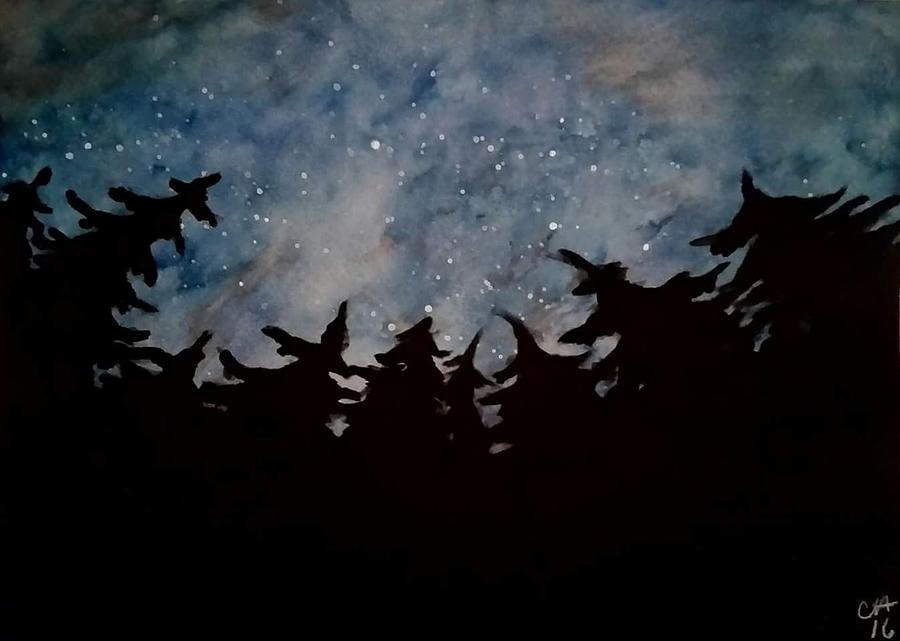 Starry Sky Drawing by Carole Hutchison
