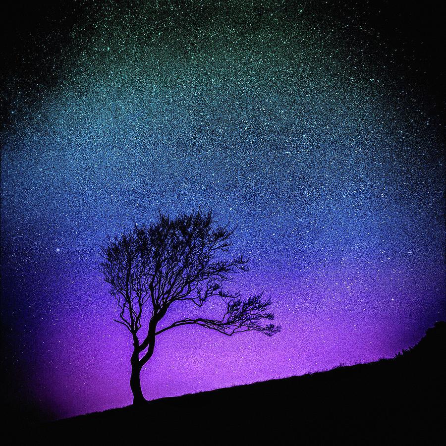 Minimalist Mixed Media - Starry Starry Night by Susan Maxwell Schmidt