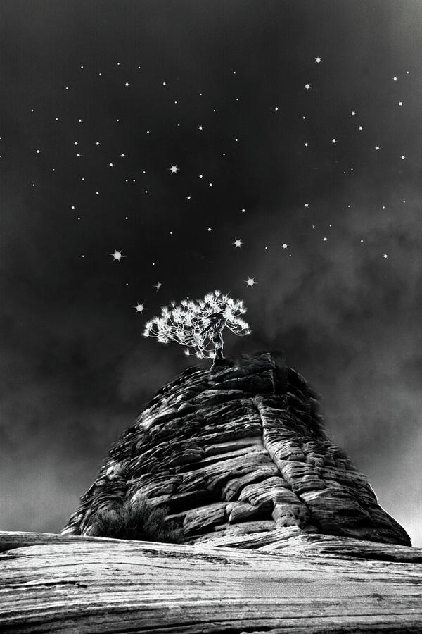 Stars At Night Photograph