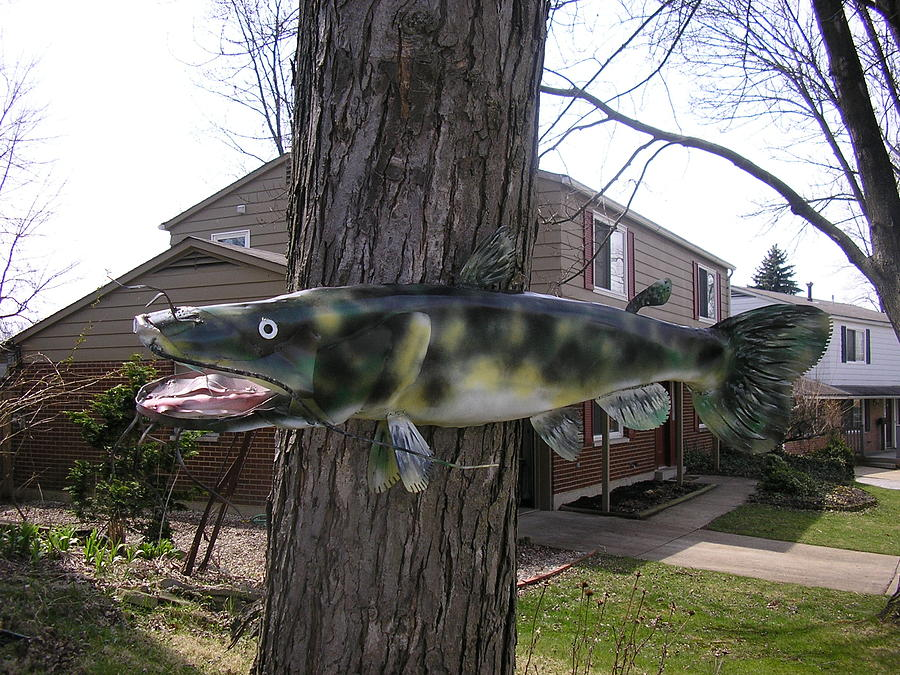 Catfish Sculpture - Steel Chanel Catfish by Todd Timler