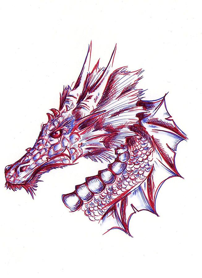 Dragon Drawing - Steel by Chris Saenz