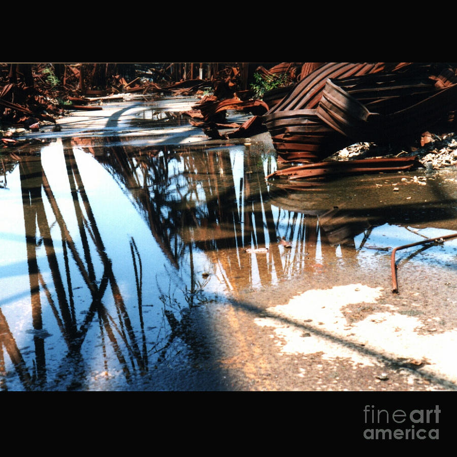 Cityscape Photograph - Steel River by Ze DaLuz