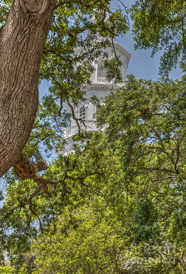 Steeple Through The Trees Photograph