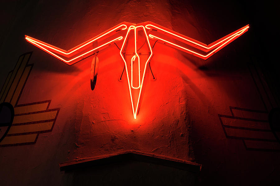 Steer Skull In Neon Photograph