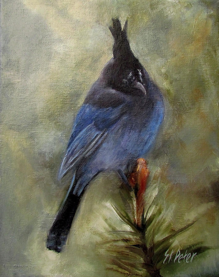 Mountain Painting - Stellar Of A Bird by Mary St Peter