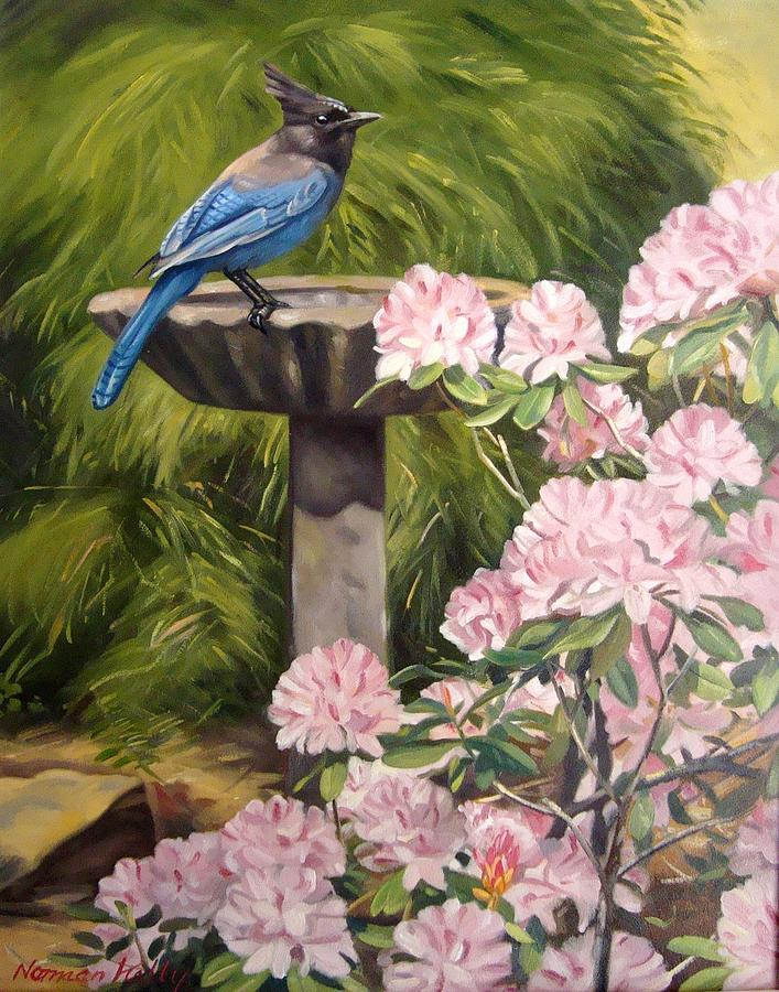 Steller Jay Painting by Norman Kelly