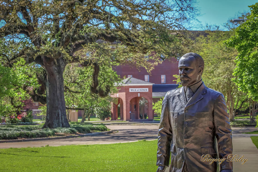 Stephens, Oaks And Walk Of Honor Photograph by Gregory Daley  MPSA