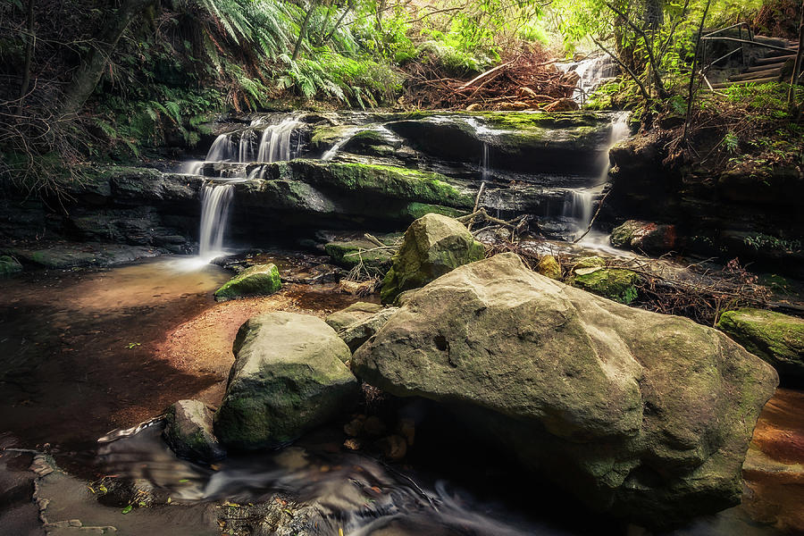 Australia Photograph - Stepping Cascade - Leura, Blue Mountains, Australia. by Daniela Constantinescu