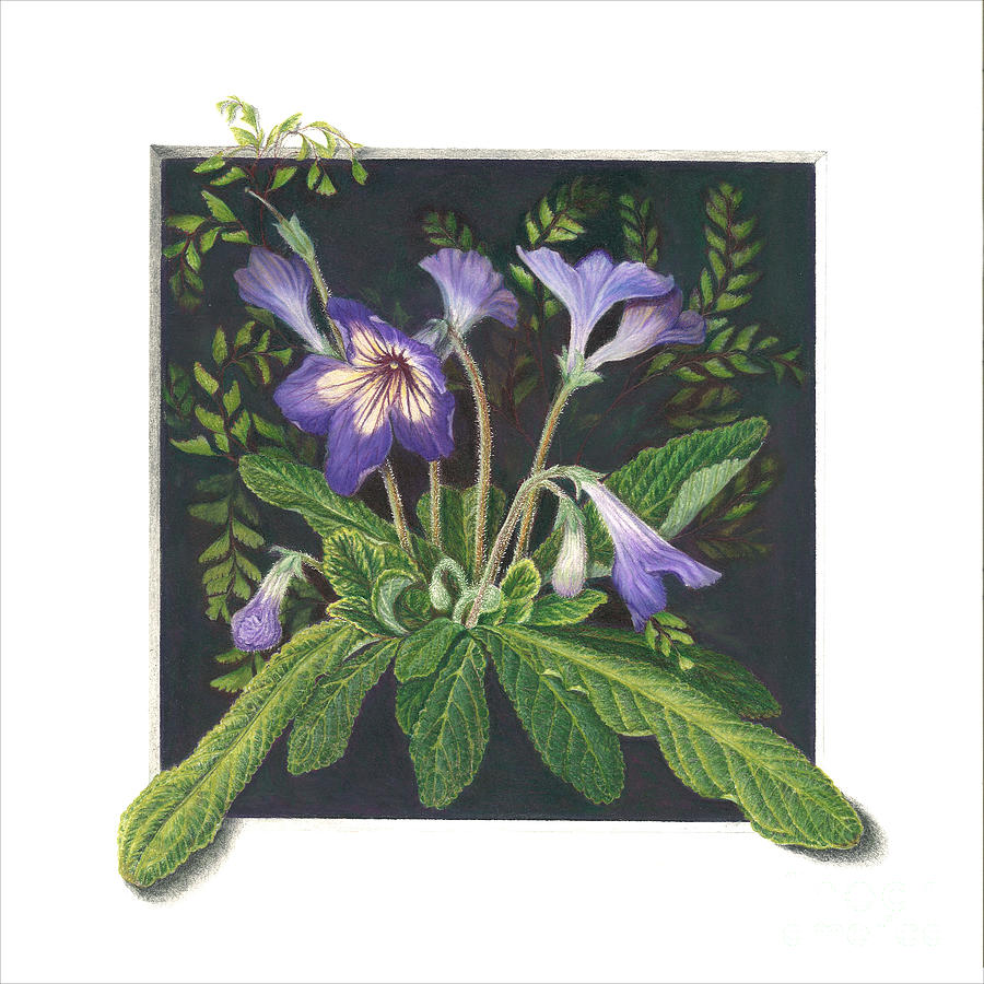 Purple Flower Painting - Stepping Out by Diane Harm