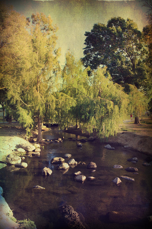 Landscapes Photograph - Stepping Stones To My Heart by Laurie Search