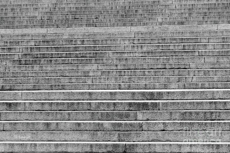 Washington Dc Photograph - Steps To The Lincoln Memorial by E B Schmidt