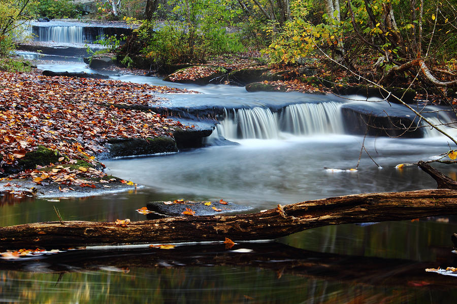 Andrew Pacheco Photograph - Stepstone Falls by Andrew Pacheco