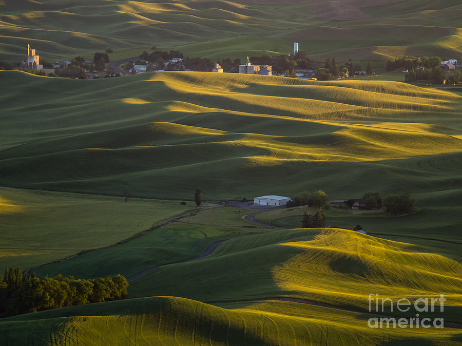 Barns Photograph - Steptoe Butte 16 by Tracy Knauer