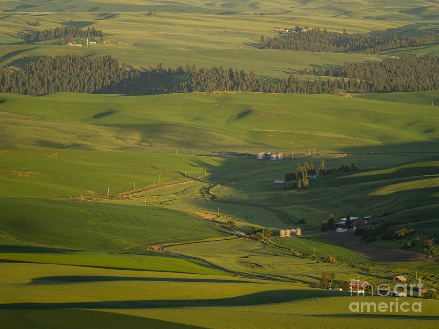 Barns Photograph - Steptoe Butte 3a by Tracy Knauer
