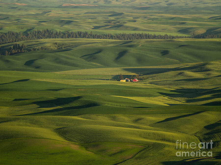 Barns Photograph - Steptoe Butte 5 by Tracy Knauer