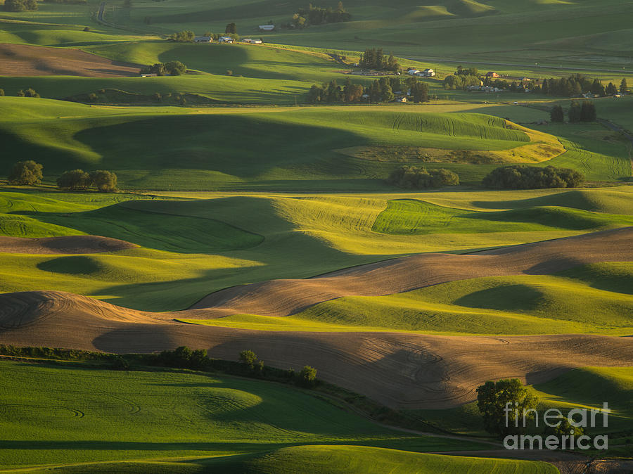 Barns Photograph - Steptoe Butte 6 by Tracy Knauer