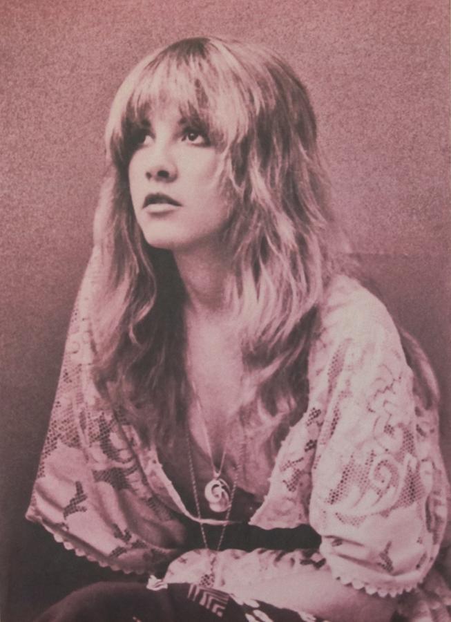 Stevie Nicks Photograph - Stevie Nicks  by Donna Wilson