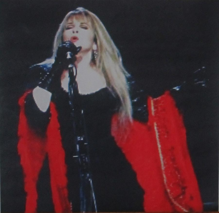 Stevie Nicks Photograph - Stevie Nicks In Concert by Donna Wilson