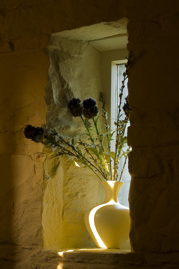 Decoration Photograph - Still Image by Gabor Pozsgai