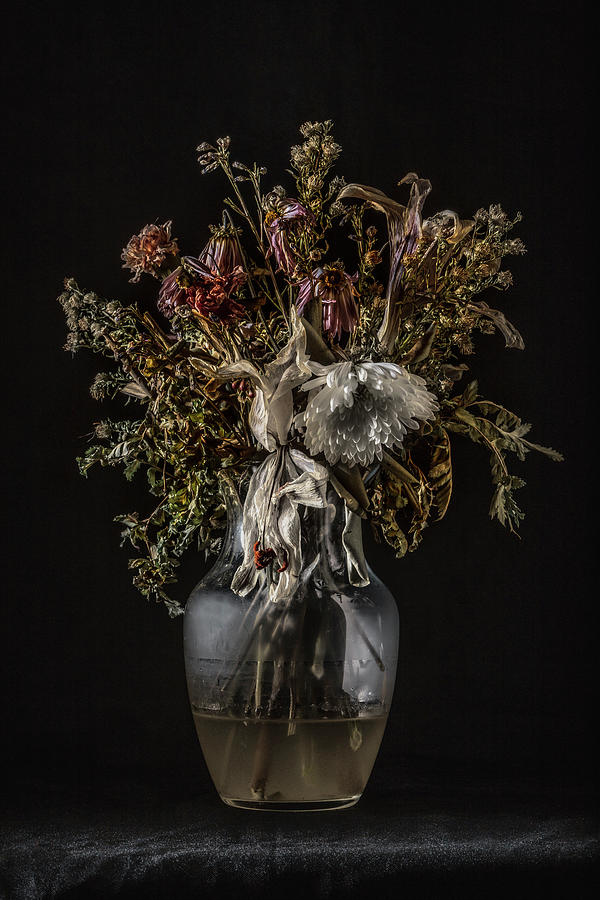 Still Life #1 by Andrew Giovinazzo