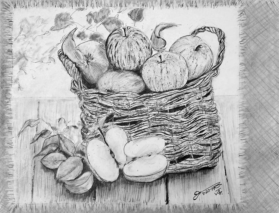 Still Life - Basket Of Apples Drawing
