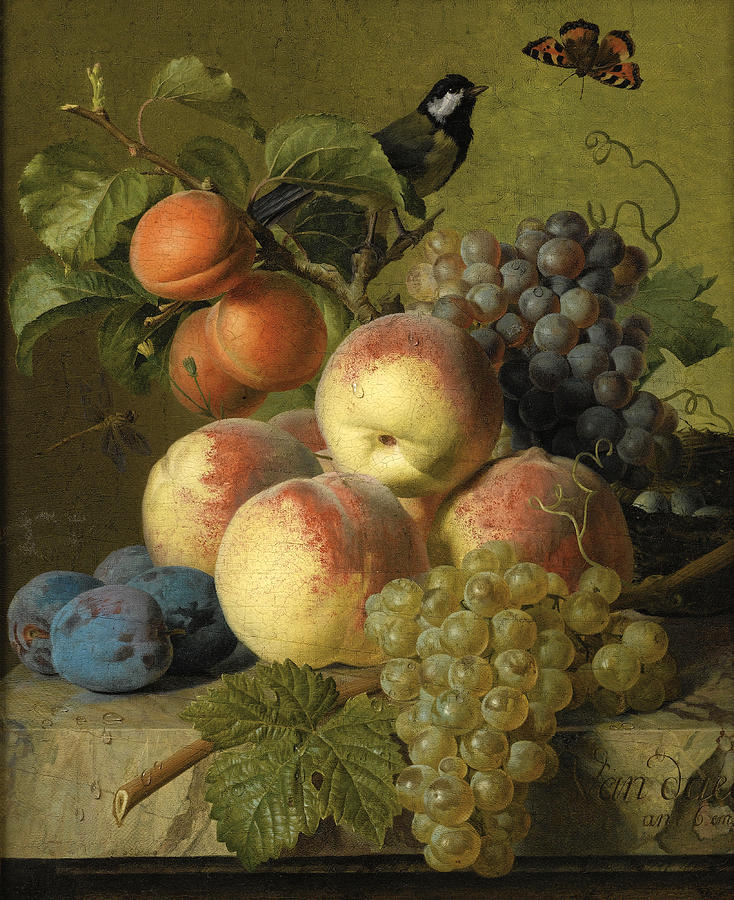 Still Life Of Peaches  Grapes And Plums On A Stone Ledge With A Bird And Butterfly Painting by Jan Frans van Dael