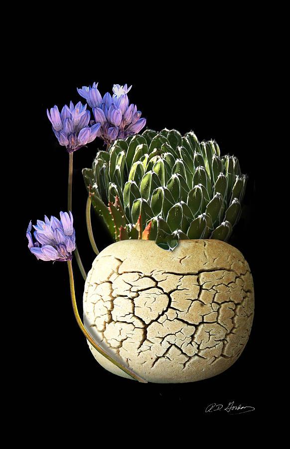 Flowers Photograph - Still Life by Richard Gordon