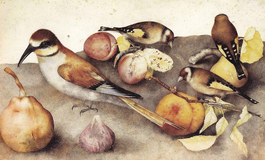 Still Life With Pears And Hazelnuts By Giovanna Garzoni. 3 Painting
