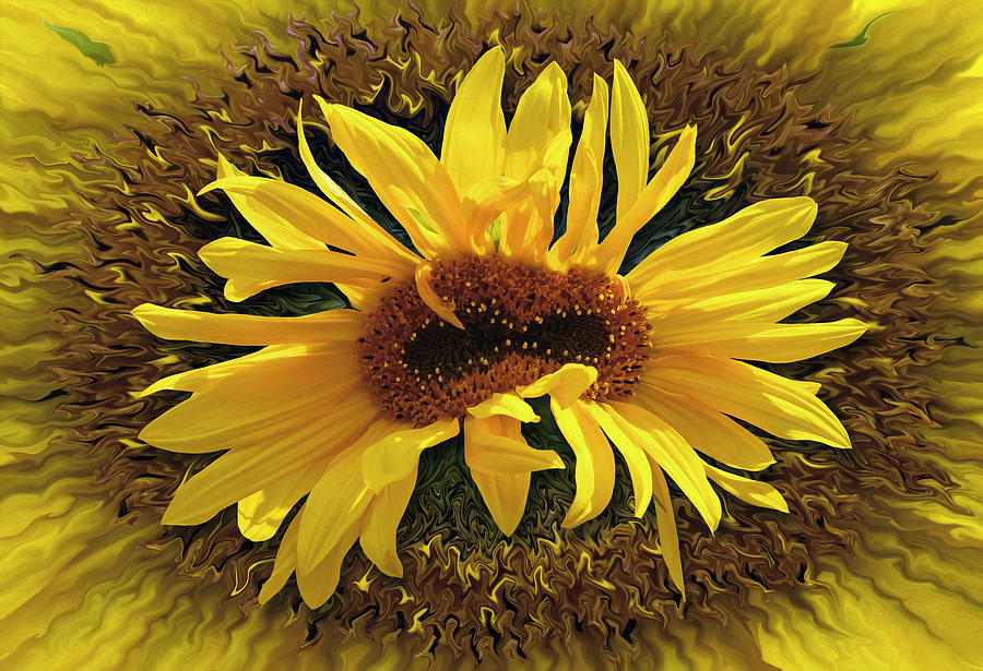 Helianthus Annuus Digital Art - Still Life With Sunflower by Becky Titus