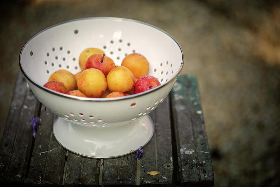 Still Life Photograph - Still Life With Yellow Plums  by Nailia Schwarz