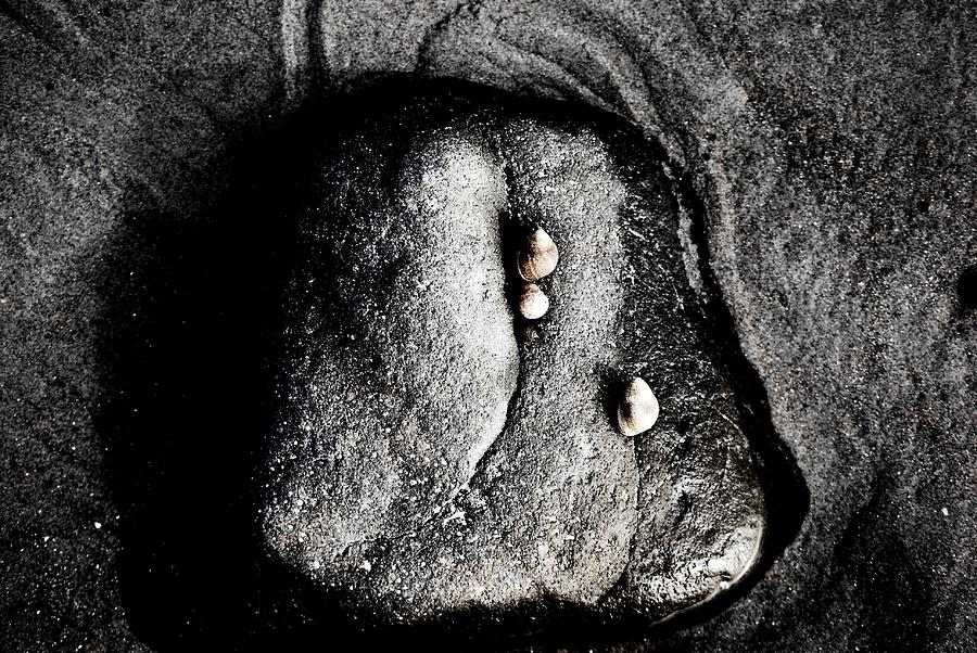 Rocks Photograph - Still by Sarah Jean Sylvester