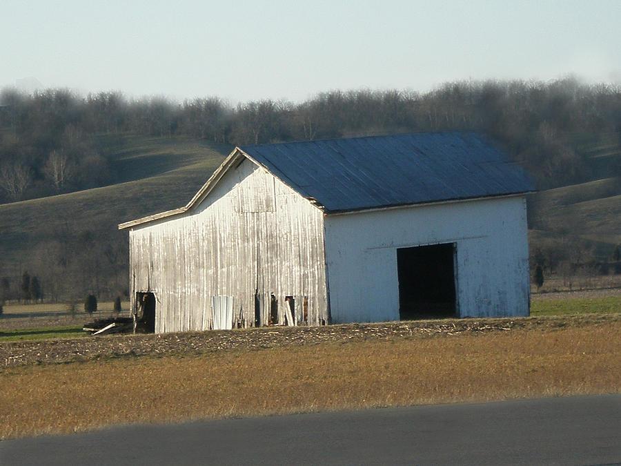 Farm Photograph - Still Standing by Martie DAndrea