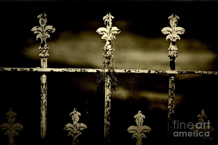 Wrought Iron Photograph - Still Standing by Scott Pellegrin